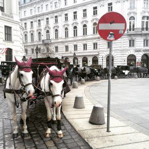 Vienna takes proud in having carriages as taxis
